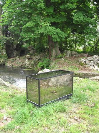 http://www.laurentledeunff.fr/files/gimgs/189_aquarium-avec-des-miroirs-sans-tain-pour-poisson-timide2.jpg