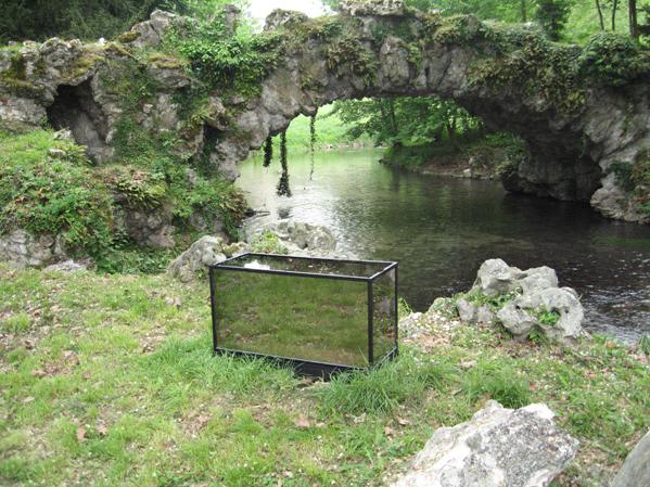 http://www.laurentledeunff.fr/files/gimgs/189_aquarium-avec-des-miroirs-sans-tain-pour-poisson-timide4.jpg
