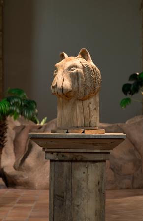 http://www.laurentledeunff.fr/files/gimgs/489_tigre-3.jpg